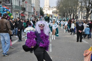 13 mars 2016 carnaval de Limoges (8)